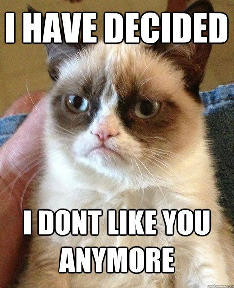 I Have Decided - I Don't Like You Anymore