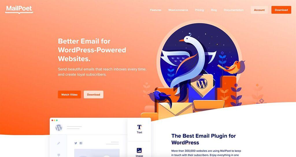 Orange Web Design - Color In Web Design